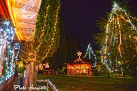Ενάρξη Χριστουγεννιάτικων εκδηλώσεων στον Δήμο Πύδνας Κολινδρού